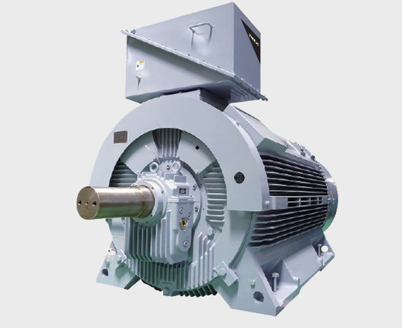 Custom-Designed Induction Motors